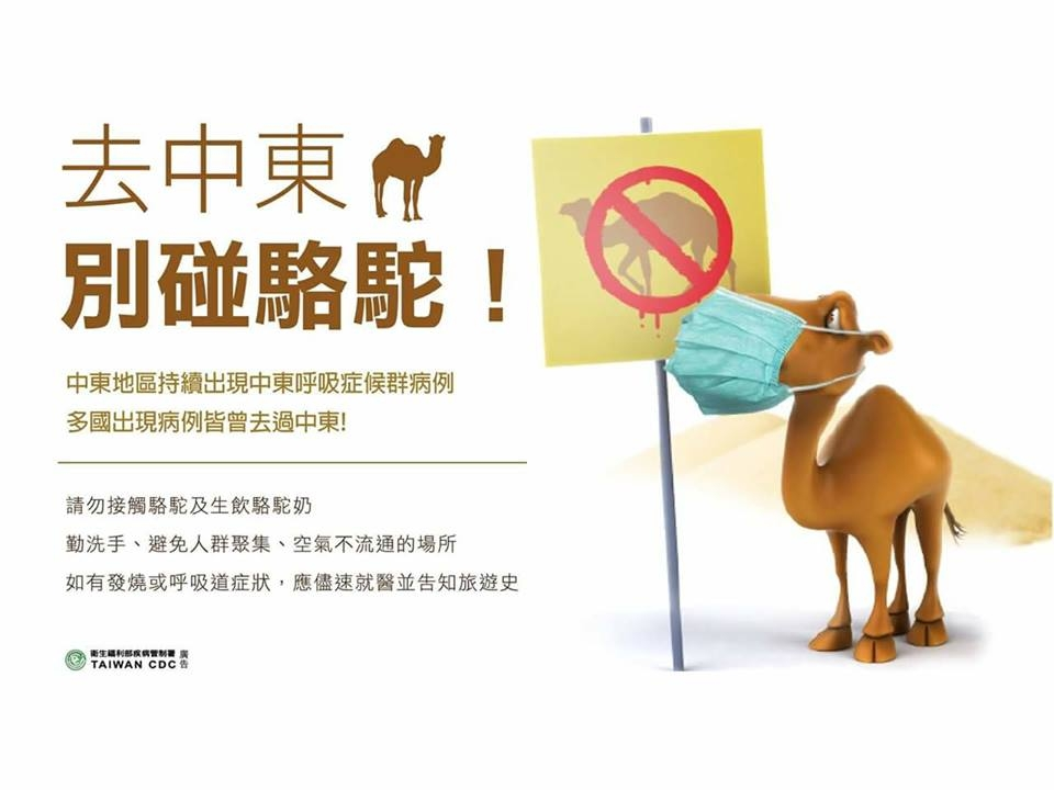 Don't touch camel