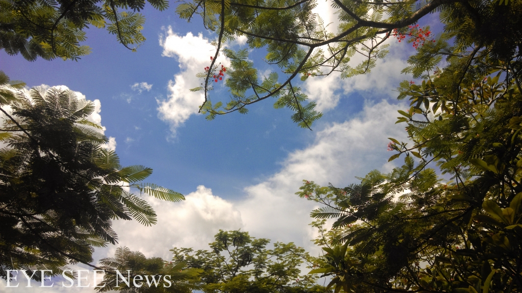 蔚藍、舒服的天空